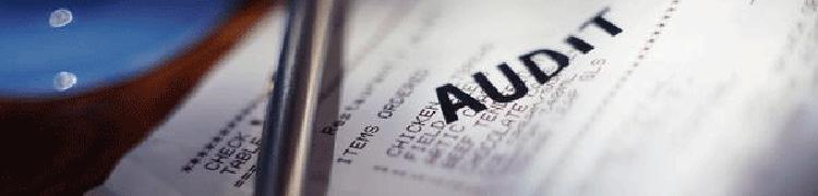 Financial-Audit2