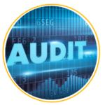 Business Financial Audits